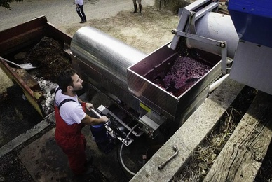 How do you make red wine?