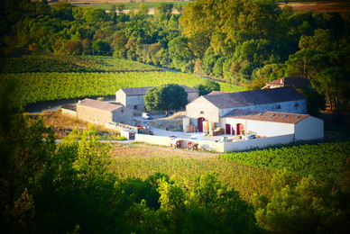 The most beautiful wine estates in the south of France